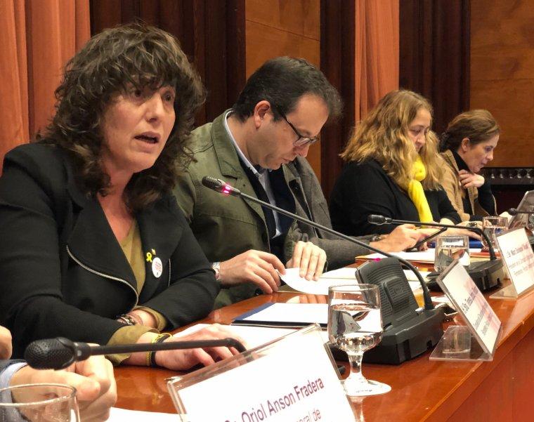 La consellera d'Agricultura en un moment de la compareixença a la Comissió d'Agricultura del Parlament
