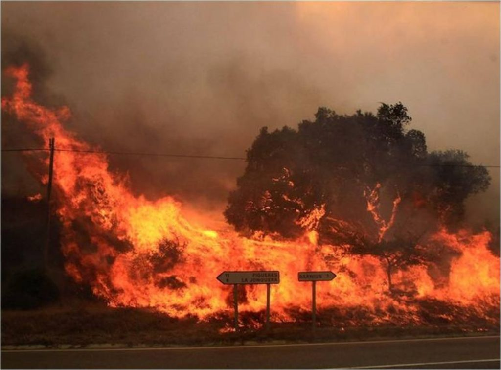 Incendi forestal a prop de La Jonquera