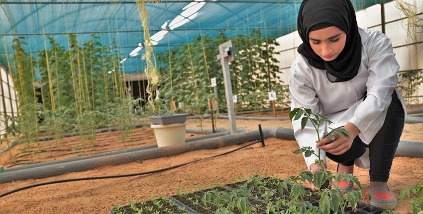 Una investigadora treballant a les instal·lacions del Centre | ICBA